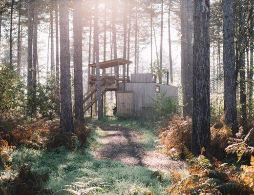 Nutchel Cosy Cabin boshuisje